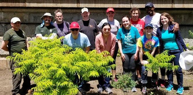Grinnell-in-New York alumni and students take a group photo with gardeners from Partnerships for Parks Saturday at Dutch Kills Green park.