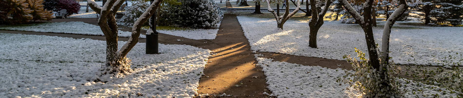 Snow covers the grass as the walkways and foliage on campus are featured in this image.