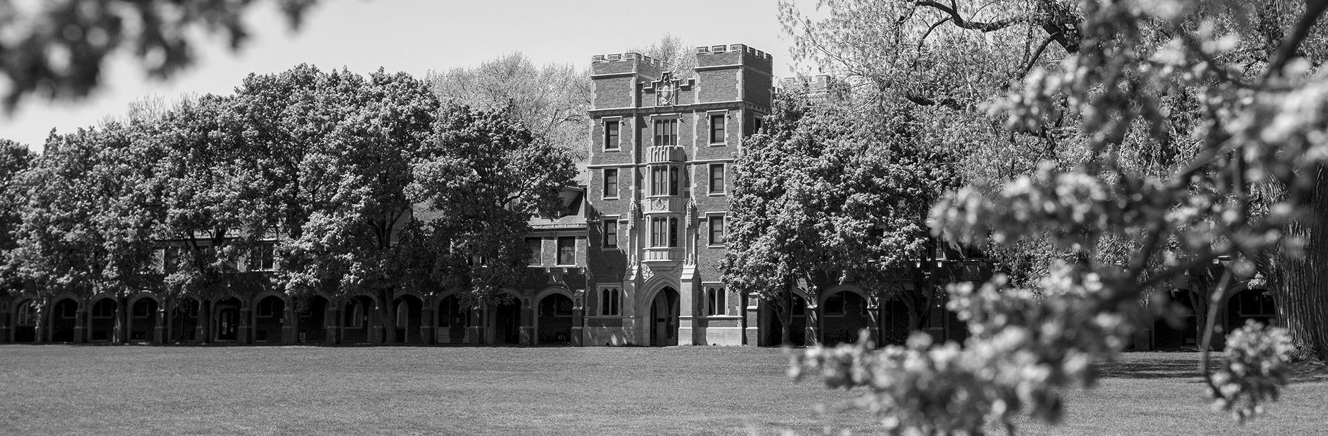 A black and white photo of Gates tower surrounded by trees.