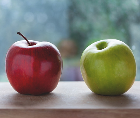 Two apples sitting next to each other. One red, one green.