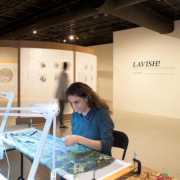 Photo the art exhibit by Zoé Strecker '88, Lavish!