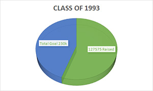 Infograph: Pie chart showing about 60% of the goal of 400k has been raised.